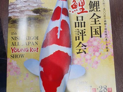 Alle tosai van de veiling Momotaro staan online