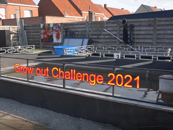 Grow out Challenge 2021