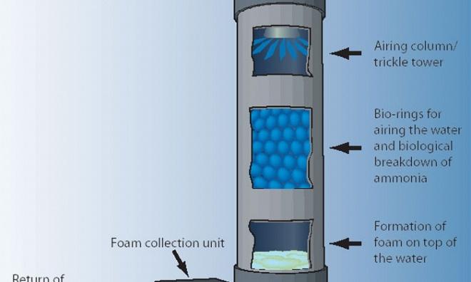 Clarity Proteine Skimmer