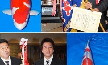 De 52ste Nogyo-sai Nishikigoi Show