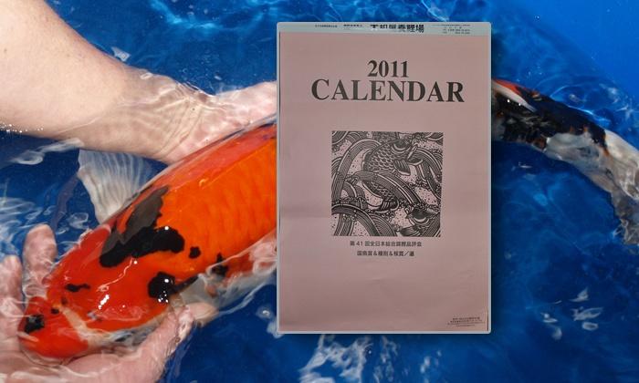 De kalender 2011