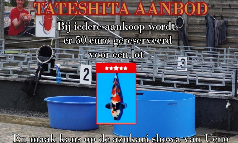 De tateshita challenge !