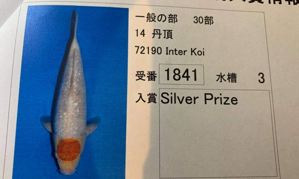 Een silver prijs in Japan