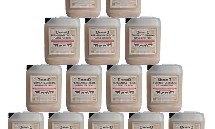 Een vloot melkzuurbacteriën