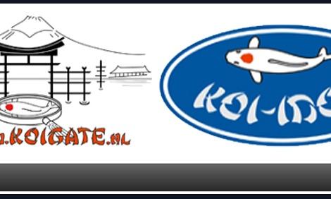 Koi-idol (contact) dag, zondag 18 maart