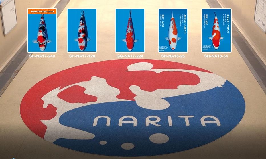 Narita dag 1