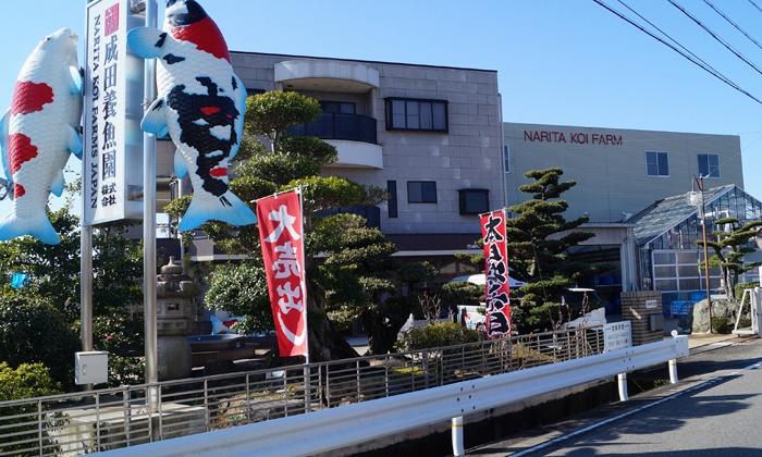 Narita Opensales