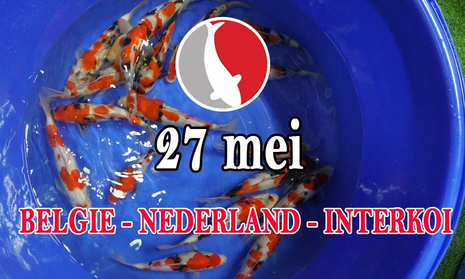 Nederland  België  Interkoi