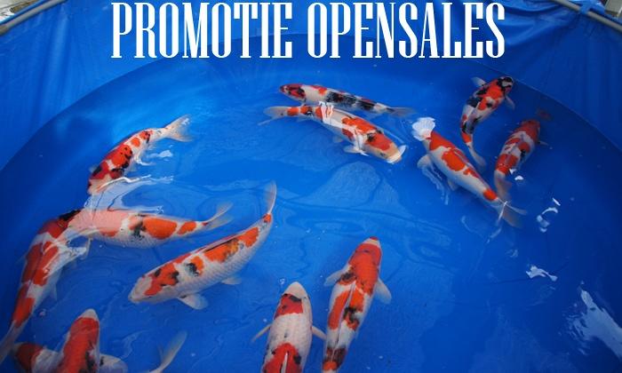 Open Sales Promotie