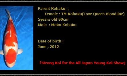 Tosai Momotaro veiling 19-20 februari