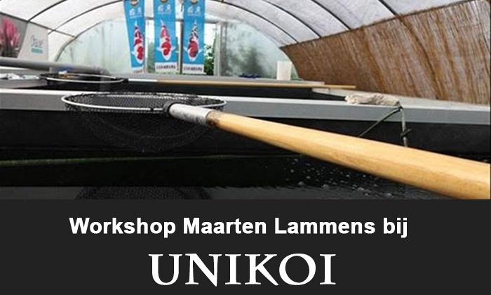 Workshop bij Unikoi