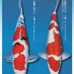 3de Narita veiling: afbeelding 2