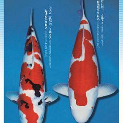 3de Narita veiling: afbeelding 6