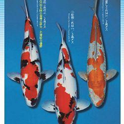 3de Narita veiling: afbeelding 16