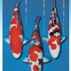 3de Narita veiling: afbeelding 20