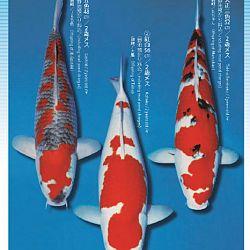 3de Narita veiling: afbeelding 28