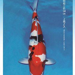 3de Narita veiling: afbeelding 37