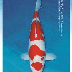 3de Narita veiling: afbeelding 40