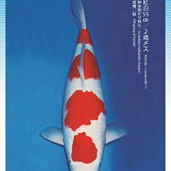 3de Narita veiling: afbeelding 42