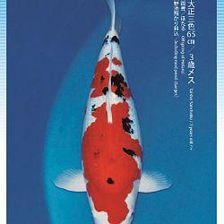 3de Narita veiling: afbeelding 45