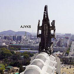 All Japan Young Koi Show en Himeji Castle: afbeelding 14