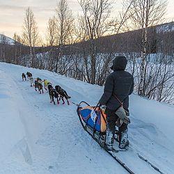 Bob in Kiruna, Zweden: afbeelding 2