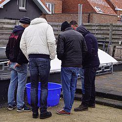 Brrrr...Het was bitter koud: afbeelding 2