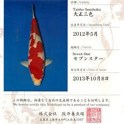 Certificaten Sakai FF: afbeelding 1