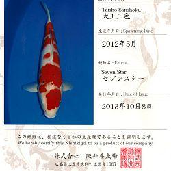Certificaten Sakai FF: afbeelding 2