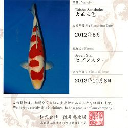 Certificaten Sakai FF: afbeelding 5