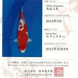 Certificaten Sakai FF: afbeelding 6