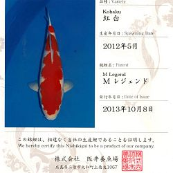 Certificaten Sakai FF: afbeelding 7