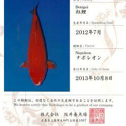 Certificaten Sakai FF: afbeelding 9