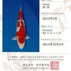 Certificaten Sakai FF: afbeelding 12