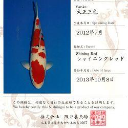 Certificaten Sakai FF: afbeelding 13