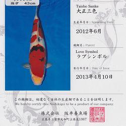 Certificaten Sakai FF: afbeelding 14