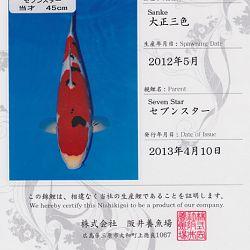 Certificaten Sakai FF: afbeelding 15