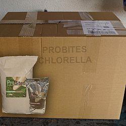 Chlorella, de keuze van het moment: afbeelding 1