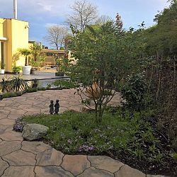 De nieuwe tuin van Jos en Lisette: afbeelding 1