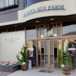De persoonlijkheid Narita: afbeelding 5