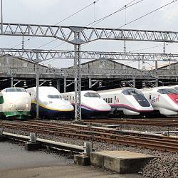 De railwaypassen zijn aangekomen: afbeelding 1