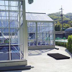De Taniguchi Story: afbeelding 10