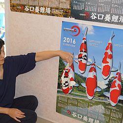 De Taniguchi Story: afbeelding 25