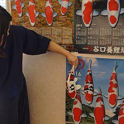 De Taniguchi Story: afbeelding 26