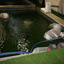 De vissen zwemmen hun baantjes: afbeelding 1