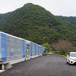 Een dag op de Momotaro Koifarm: afbeelding 5