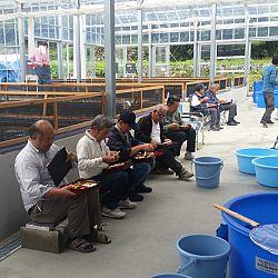 Een dag Opensales bij Taniguchi San: afbeelding 3