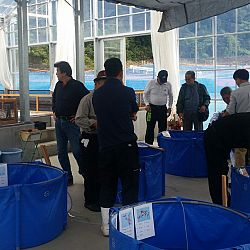 Een dag Opensales bij Taniguchi San: afbeelding 4