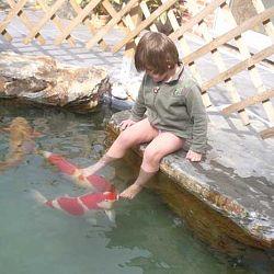 Een duik in het verleden: afbeelding 4