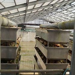 Een lege 1500 ton vijver: afbeelding 5